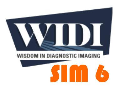 SIM 6