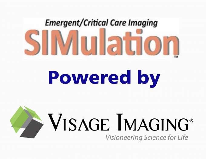 Visage Blog
