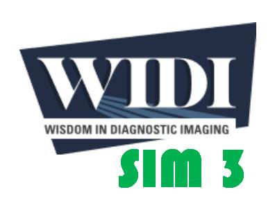 SIM 3