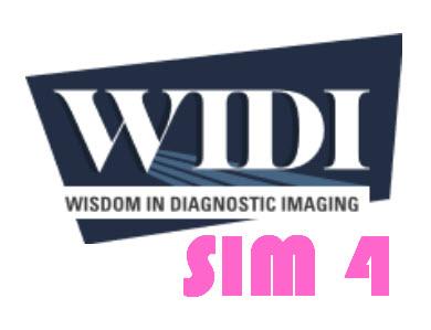 SIM 4