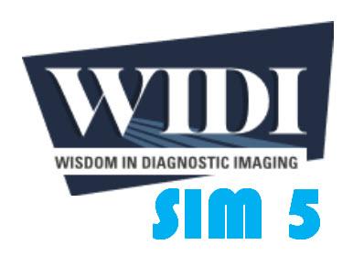 SIM 5