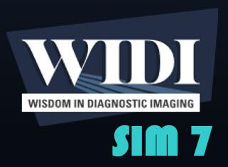 WIDI SIM Logo